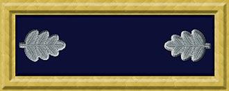 Rufus Dawes - Image: Union army lt col rank insignia