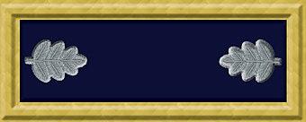 Uniform of the Union Army | Military Wiki | FANDOM powered