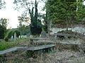 Untitled - panoramio - georama (5).jpg