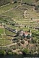 Vale do Rio Douro - Portugal (36430532986).jpg