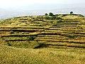 Valguarnera Caropepe - Alcune abitazioni sul Monte Rossomanno.jpg