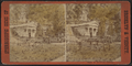 Vaults in Greenwood Cemetery, from Robert N. Dennis collection of stereoscopic views.png