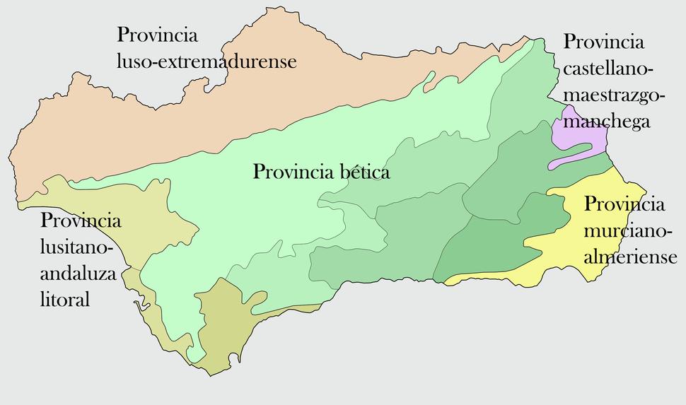Vegetacion en andalucia
