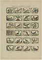 Velerhande vogelen, volgens alphabetische orde gerangschikt.jpeg