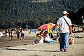 Vendedor de Palmeras en Lago Caburgua.jpg