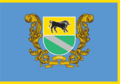 Verkhnodniprovsk fl.png