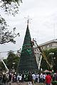 Vidal y Santilli asisten a la ceremonia de bendición del Arbol de Navidad en Plaza de Mayo (6559593819).jpg