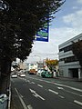 View of Shimohyakucho Crossing of Japan National Routes 208 and 443 from south side.jpg