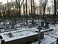 Volkovskoe cemetery graves 3.jpg