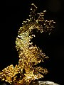 WLA hmns Gold shaped dragon.jpg