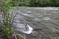 Wallowa Wild and Scenic River (34834694962).jpg