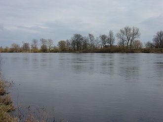 Warta - Warta River near Kostrzyn