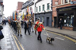 Watchman (mascot) Staffordshire Bull Terrier, mascot of the Staffordshire and Mercian Regiments