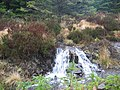 Waterfall in Glen Brittle Forest - geograph.org.uk - 143004.jpg