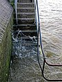 Watermen's stairs, River Thames in Bermondsey, London.jpg