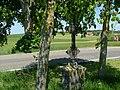 Wegkreuz - panoramio (25).jpg