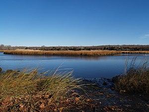Westport River - The WestBranch, near Adamsville