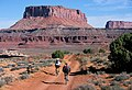 White Rim Road (Island in the Sky).jpg
