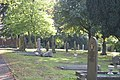 Wilnecote Old Cemetery (8) - geograph.org.uk - 1571292.jpg