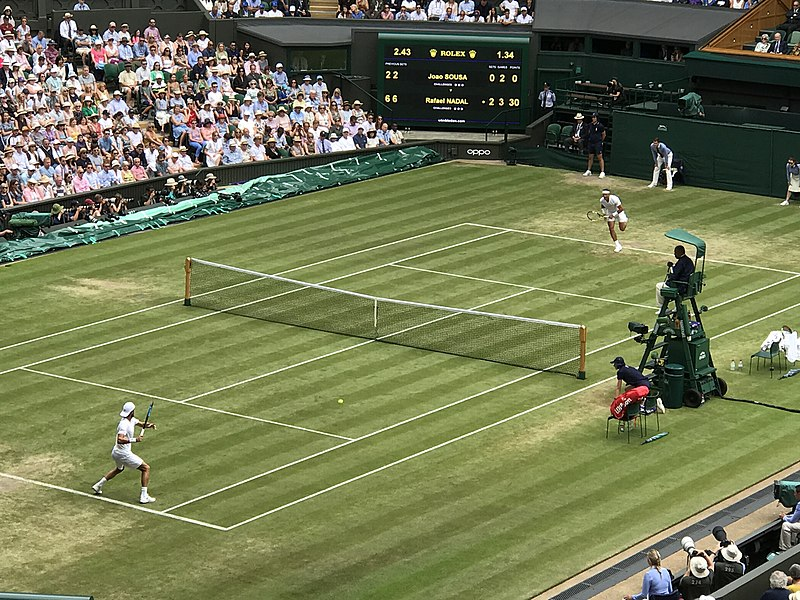 best sports moments of 2019, sportsbooks, weird bets, betting odds, betting predictions, betting tips, online gambling sites in the us, gamingzion, unibet, online casino, online poker, athletics, basketball, Champions League, Euro 2020, Formula 1, Masters, NBA, NFL, NHL, Sports moments, swimming, Wimbledon