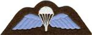 No. 1 Parachute Training School RAF - RAF Parachute Badge with Wings depicts an open parachute embroidered in white flanked by a pair of wings embroidered in light blue.