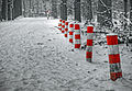 Winter 2010 (4358862289).jpg
