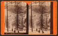 Winter at Horse-shoe Bend, on the Penna. R. R, by R. A. Bonine 4.png