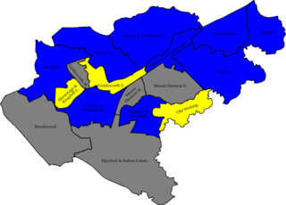 2007 Woking Borough Council election