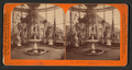 Woodward's Gardens, under the Dome of the Conservatory, from Robert N. Dennis collection of stereoscopic views 2.png