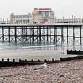 Worthing Pier, West Sussex - geograph.org.uk - 1114809.jpg