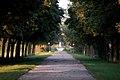 WrNeustadt Akademiepark Grosse Querallee.jpg