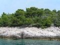 Wyspa Losinj (Losinj island) - panoramio.jpg