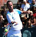 Xavier Malisse US Open 2011.jpg