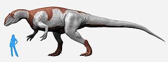 Dashanpu Formation - Image: Yangchuanosaurus NT small