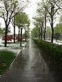 Yanta, Xi'an, Shaanxi, China - panoramio - monicker (7).jpg