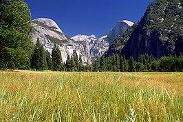 De ronde verweringsvormen van de bergen in Yosemite National Park in de Sierra Nevada vormen een van de toeristische iconen van Californië