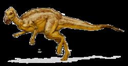 250px-Zalmoxes_dinosaur.png