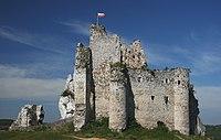 Zamek w Mirowie 12.08.08 pl.jpg