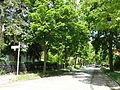 Zehlendorf Kösterstraße.JPG