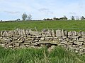 (Blocked up) sheephole in a drystone wall near High Scotch Hall - geograph.org.uk - 822095.jpg