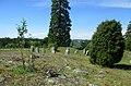 Åsa gravfält (RAÄ-nr Ytterselö 123-1) 0382.jpg
