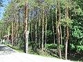 Билярск. Татария. Май 2013 - panoramio (1).jpg