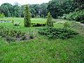 Ботанічний сад ДНУ 03.JPG