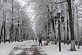 Бульвар Казанский, в зимнюю пору.jpg