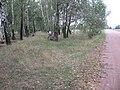 Бывшая военная узкоколейка - panoramio.jpg