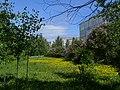 Возле школы №25 - panoramio.jpg