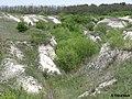 Дворічанський національний природний парк 26.jpg