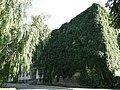 Дніпропетровський ботанічний сад 19.JPG