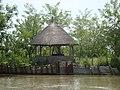 Дунайський біосферний заповідник. 2010 рік. 01.jpg