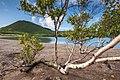 Кальдера вулкана Головнина. Берег озера Горячее.jpg